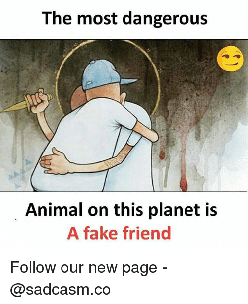 new page: The most dangerous  Animal on this planet is  A fake friend Follow our new page - @sadcasm.co
