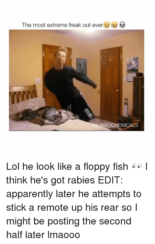 freaking out: The most extreme freak out ever  BIOCHEMICALS Lol he look like a floppy fish 👀 I think he's got rabies EDIT: apparently later he attempts to stick a remote up his rear so I might be posting the second half later lmaooo