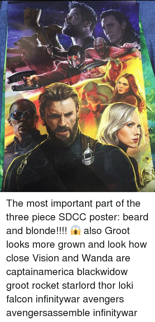 Beard, Memes, and Vision: The most important part of the three piece SDCC poster: beard and blonde!!!! 😱 also Groot looks more grown and look how close Vision and Wanda are captainamerica blackwidow groot rocket starlord thor loki falcon infinitywar avengers avengersassemble infinitywar