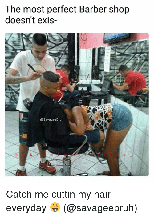 Barber Shop: The most perfect Barber shop  doesn't exis-  @SavageeBruh Catch me cuttin my hair everyday 🤑 (@savageebruh)