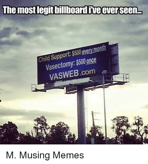 Child Support, Meme, and Memes: The mostlegitbillboardive ever seenL  every month  Child Support $500  ss00 Vasectomy:  once  VASWEB com M. Musing Memes