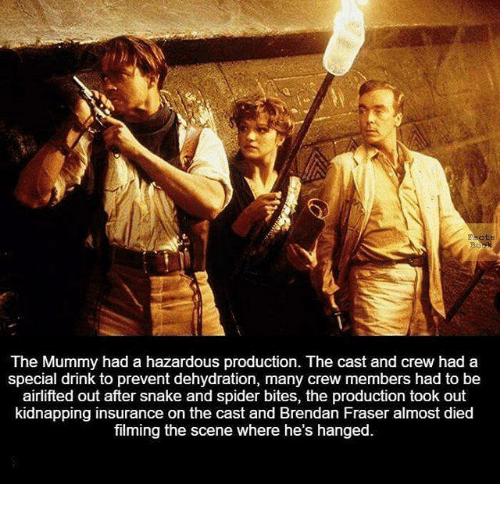 Brendan Fraser, Memes, and Spider: The Mummy had a hazardous production. The cast and crew had a  special drink to prevent dehydration, many crew members had to be  airlifted out after snake and spider bites, the production took out  kidnapping insurance on the cast and Brendan Fraser almost died  filming the scene where he's hanged.