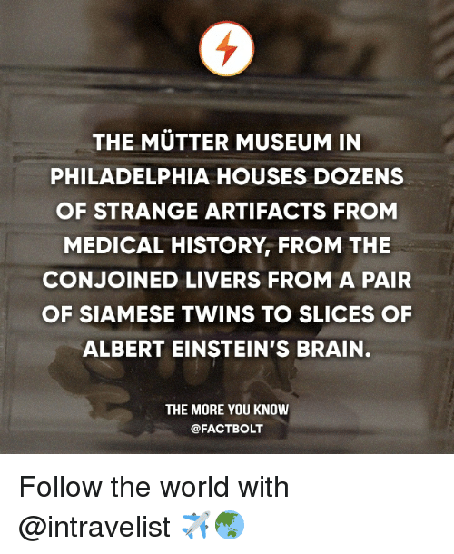 Memes, The More You Know, and Twins: THE MUTTER MUSEUM IN  PHILADELPHIA HOUSES DOZENS  OF STRANGE ARTIFACTS FROM  MEDICAL HISTORY FROM THE  CONJOINED LIVERS FROM A PAIR  OF SIAMESE TWINS TO SLICES OF  ALBERT EINSTEIN'S BRAIN.  THE MORE YOU KNOW  @FACT BOLT Follow the world with @intravelist ✈️🌏