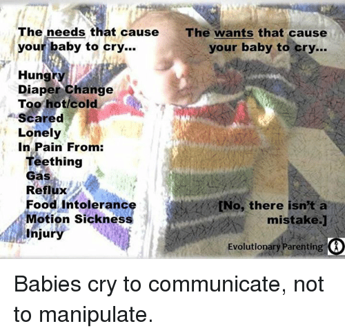 Memes, Baby Crying, and 🤖: The needs that cause The wants that cause  our baby to cry...  your baby to cry...  Hung  Diaper Change  A  Too hot/cold  Scared  Lonely  In Pain From:  Teething  Gas  Reflux  Food Intoleranc  tNo, there isn't a  Motion sickness  mistake.]  injury  Evolutionary Parenting Babies cry to communicate, not to manipulate.
