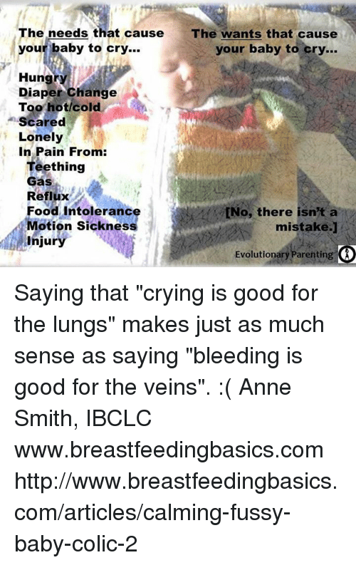 """Crying, Food, and Memes: The needs that cause The wants that cause  our baby to cry...  your baby to cry...  Hung  Diaper Change  A  Too hot/cold  Scared  Lonely  In Pain From:  Teething  Gas  Reflux  Food Intoleranc  tNo, there isn't a  Motion sickness  mistake.]  injury  Evolutionary Parenting Saying that """"crying is good for the lungs"""" makes just as much sense as saying """"bleeding is good for the veins"""". :( Anne Smith, IBCLC www.breastfeedingbasics.com  http://www.breastfeedingbasics.com/articles/calming-fussy-baby-colic-2"""