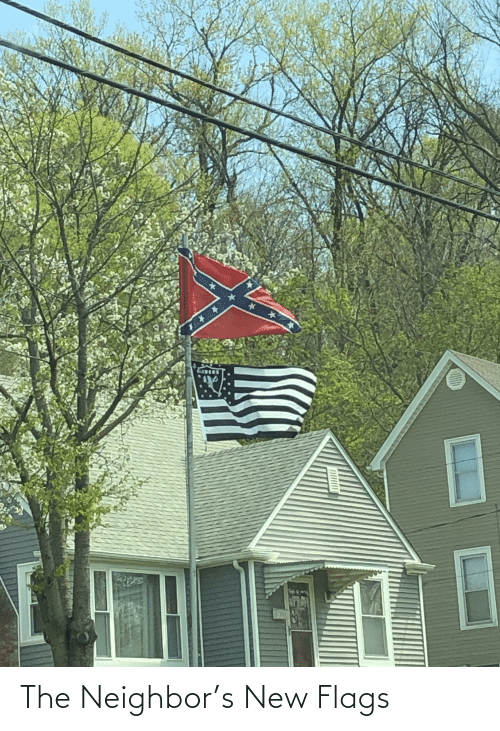 flags: The Neighbor's New Flags