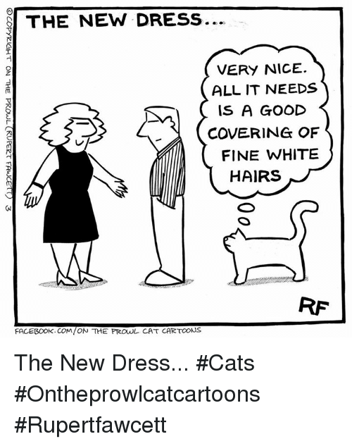 Nice: THE NEW DRESS  VERY NICE.  ALL IT NEEDS  IS A GOOD  COVERING OF  FINE WHITE  HAIRS  FACEBOOK. COM/ON THE PROwL CAT CARTOONS The New Dress... #Cats #Ontheprowlcatcartoons #Rupertfawcett