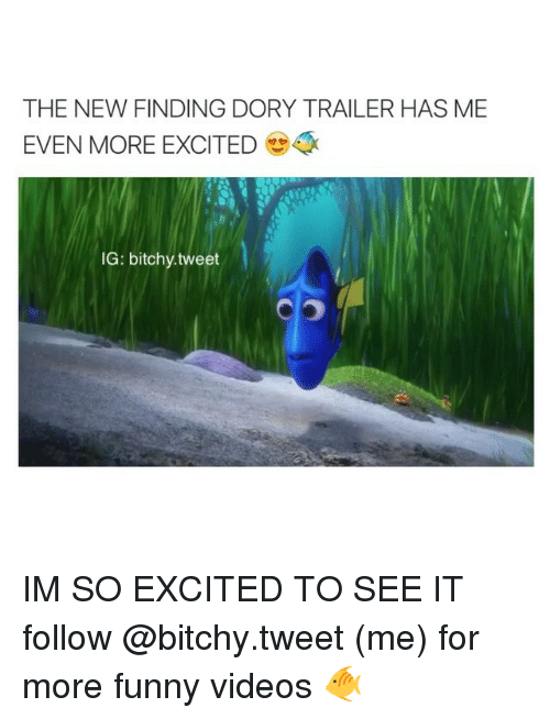 Girl Memes: THE NEW FINDING DORY TRAILER HAS ME  EVEN MORE EXCITED  IG: bitchy.tweet IM SO EXCITED TO SEE IT follow @bitchy.tweet (me) for more funny videos 🐠
