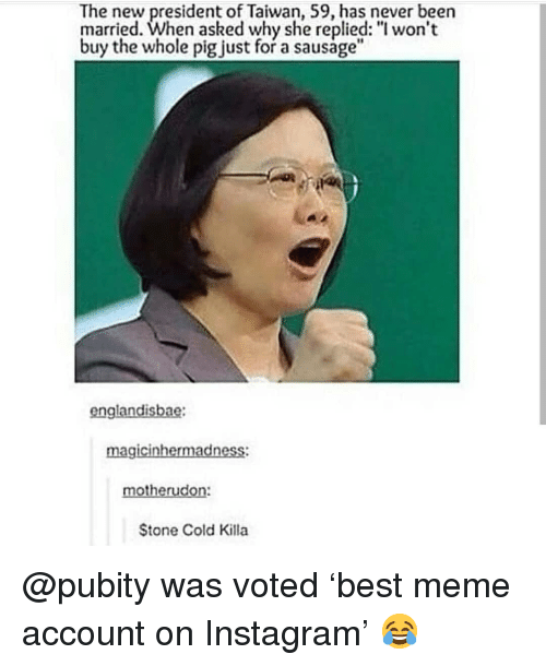 "stone cold: The new president of Taiwan, 59, has never beern  married. When asked why she replied: ""l won't  buy the whole pig just for a sausage""  englandisbae:  magicinhermadness:  motherudon:  Stone Cold Killa @pubity was voted 'best meme account on Instagram' 😂"