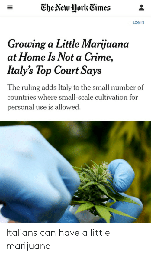italians: The New York Times  | LOG IN  Growing a Little Marijuana  at Home Is Not a Crime,  Italy's Top Court Says  The ruling adds Italy to the small number of  countries where small-scale cultivation for  personal use is allowed.  II Italians can have a little marijuana