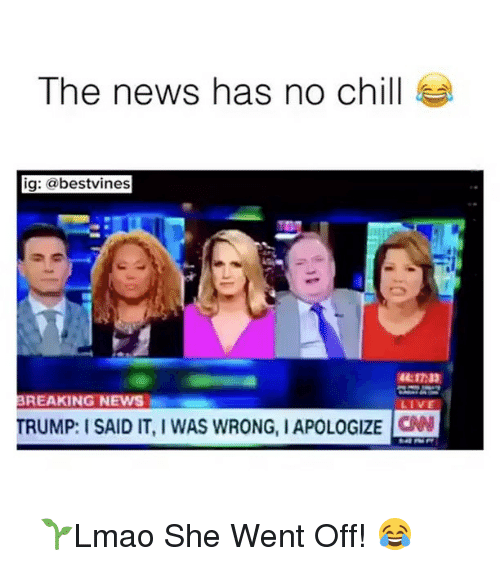 Chill, cnn.com, and Memes: The news has no chill  ig  @bestvines  BREAKING NEWS  LIVE  TRUMP: I SAID IT, WAS WRONG, IAPOLOGIZE CNN ⠀ 🌱Lmao She Went Off! 😂