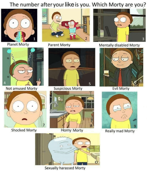 Not Amused: The number after your like is you. Which Morty are you?  Planet Morty  Parent Morty  Mentally disabled Morty  6  4  5  Not amused Morty  Suspicious Morty  Evil Morty  7  8  Shocked Morty  Horny Morty  Really mad Morty  Sexually harassed Morty