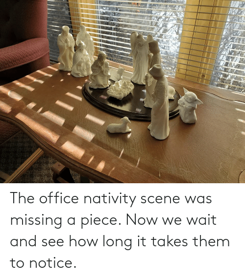 nativity: The office nativity scene was missing a piece. Now we wait and see how long it takes them to notice.