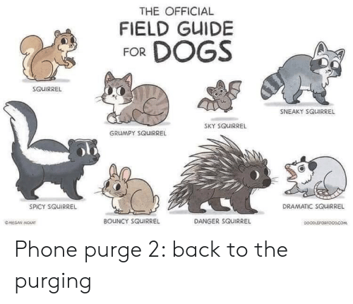 Spicy: THE OFFICIAL  FIELD GUIDE  FOR DOGS  SOUIRREL  SNEAKY SQUIRREL  SKY SQUIRREL  GRUMPY SQUIRREL  DRAMATIC SQUIRREL  SPICY SQUIRREL  BOUNCY SQUIRREL  DANGER SQUIRREL  OMEGAN MOKAT  DOOPLEFORFOODCOM Phone purge 2: back to the purging