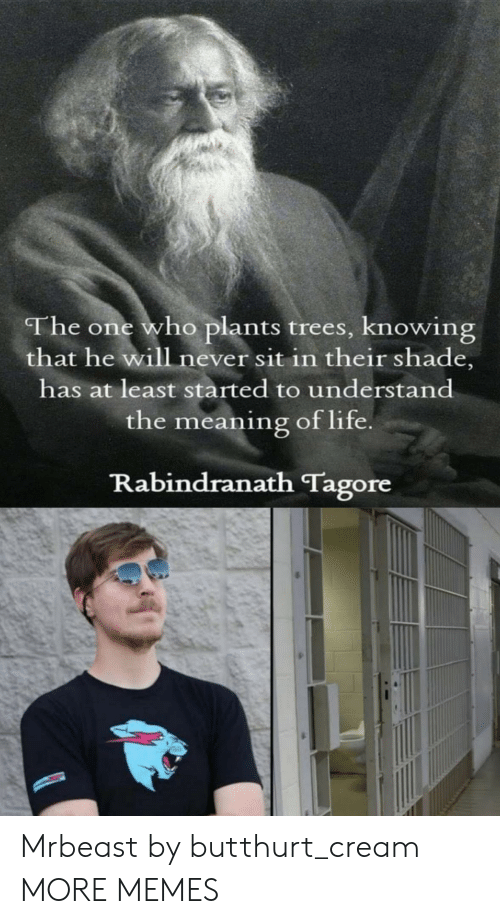 Sit In: The one who plants trees, knowing  that he will never sit in their shade,  has at least started to understand  the meaning of life  Rabindranath Tagore Mrbeast by butthurt_cream MORE MEMES