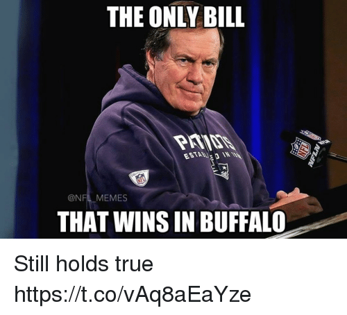 Memes, Nfl, and True: THE ONLY BILL  @NFL MEMES  THAT WINS IN BUFFALO Still holds true https://t.co/vAq8aEaYze
