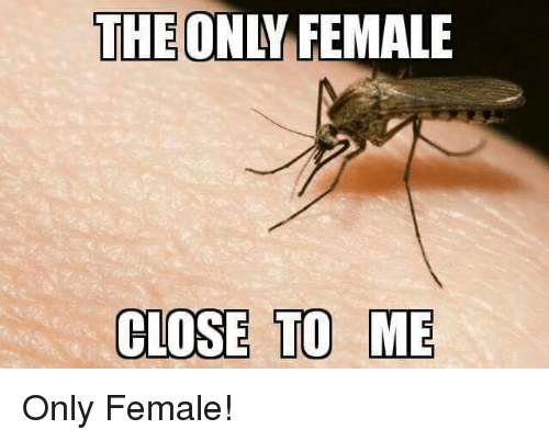 Memes and 🤖: THE ONLY FEMALE  COSE TO ME Only Female!