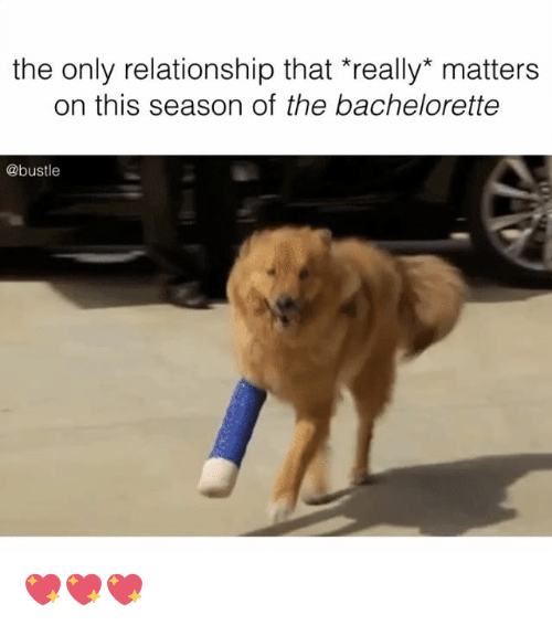 The Bachelorette: the only relationship that really matters  on this season of the bachelorette  @bustle 💖💖💖