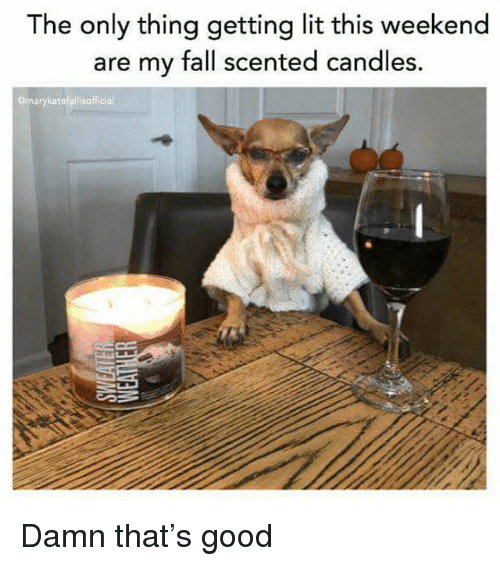 Getting Lit: The only thing getting lit this weekend  are my fall scented candles.  gmarykatefelisofficial Damn that's good