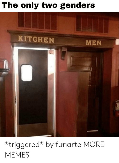 TRIGGERED: The only two genders  KITGHEN  MEN *triggered* by funarte MORE MEMES