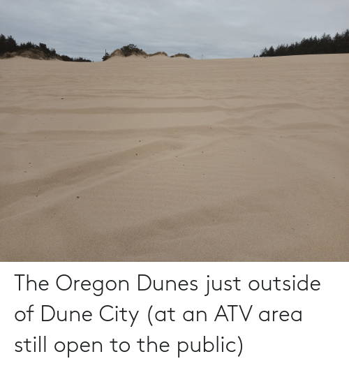 Area: The Oregon Dunes just outside of Dune City (at an ATV area still open to the public)