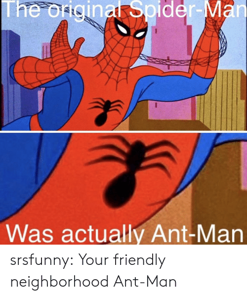 ant man: The origina Spider-  Was actually Ant-Man srsfunny:  Your friendly neighborhood Ant-Man