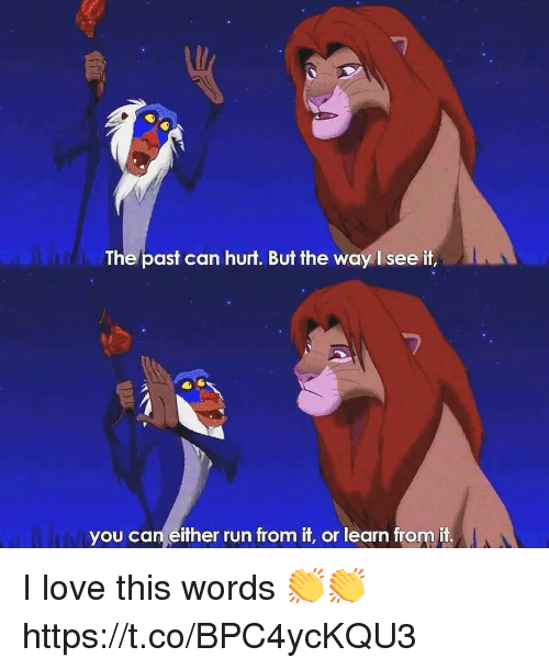 Love, Run, and Can: The/past can hurt. But the way I see it,  you can either run from it, or learn from it. I love this words 👏👏 https://t.co/BPC4ycKQU3