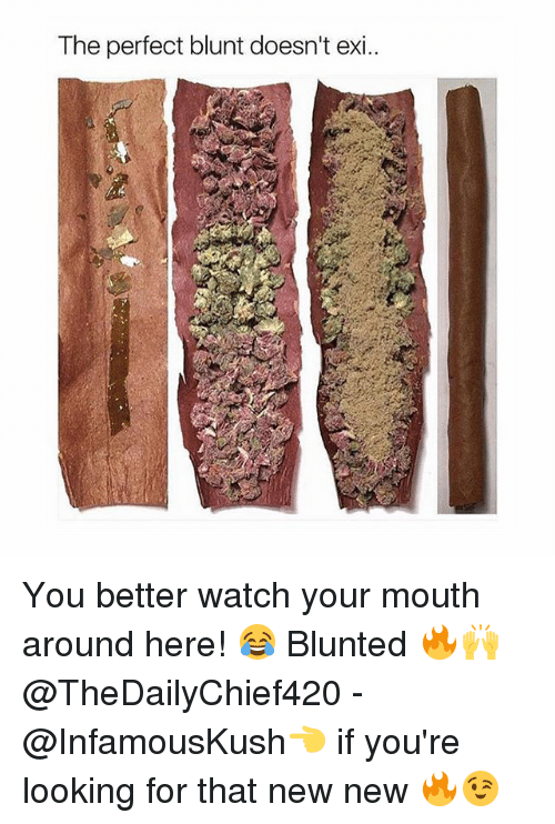 New New: The perfect blunt doesn't exi.. You better watch your mouth around here! 😂 Blunted 🔥🙌 @TheDailyChief420 - @InfamousKush👈 if you're looking for that new new 🔥😉