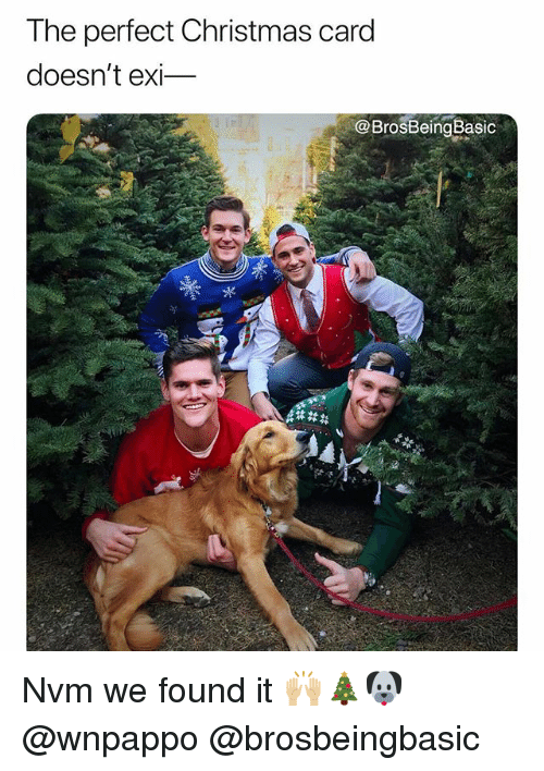 christmas-card: The perfect Christmas card  doesn't exi-  @BrosBeingBasic Nvm we found it 🙌🏼🎄🐶 @wnpappo @brosbeingbasic