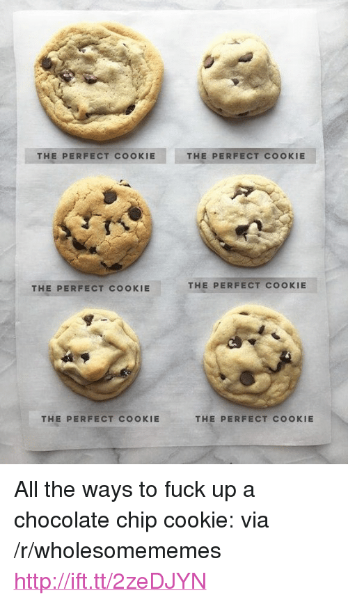 """chocolate chip cookie: THE PERFECT COOKIE  THE PERFECT COOKIE  THE PERFECT COOKIE  THE PERFECT COOKIE  THE PERFECT COOKIE  THE PERFECT COOKIE <p>All the ways to fuck up a chocolate chip cookie: via /r/wholesomememes <a href=""""http://ift.tt/2zeDJYN"""">http://ift.tt/2zeDJYN</a></p>"""