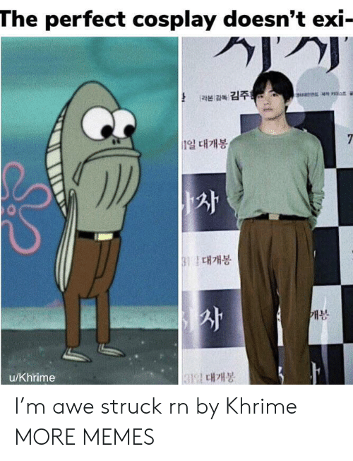 Doesnt Exi: The perfect cosplay doesn't exi-  [라본 감독 김주를  7  n일 대개봉  B11 대개봉  개봉  131일 대개봉  u/Khrime I'm awe struck rn by Khrime MORE MEMES