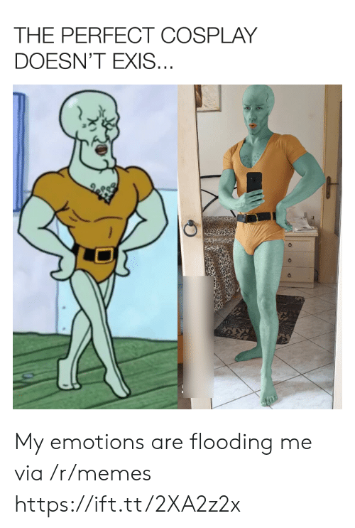 Flooding: THE PERFECT COSPLAY  DOESN'T EXIS... My emotions are flooding me via /r/memes https://ift.tt/2XA2z2x