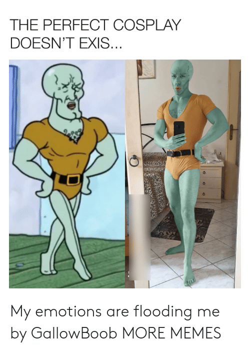 Flooding: THE PERFECT COSPLAY  DOESN'T EXIS... My emotions are flooding me by GallowBoob MORE MEMES