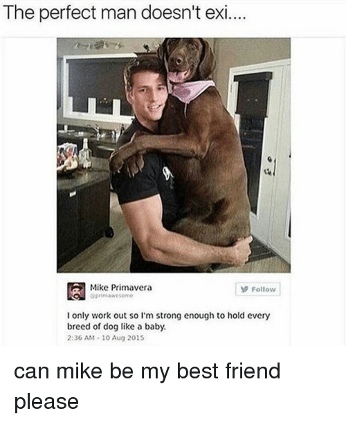 Ironic, Working Out, and Primavera: The perfect man doesn't exi  Mike Primavera  Follow  aprim awesome  I only work out so I'm strong enough to hold every  breed of dog like a baby.  2:36 AM 10 Aug 2015 can mike be my best friend please
