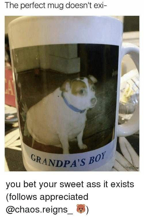 Ass, Memes, and 🤖: The perfect mug doesn't exi-  CRANDPA'S BO you bet your sweet ass it exists (follows appreciated @chaos.reigns_ 🐻)