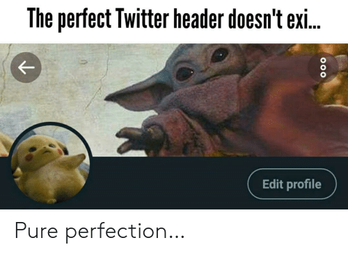 Exi: The perfect Twitter header doesn't exi..  Edit profile Pure perfection…
