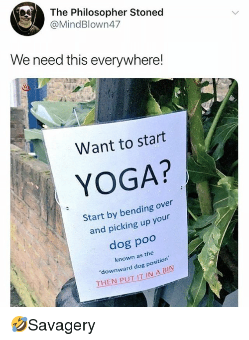 Memes, Yoga, and Bending Over: The Philosopher Stoned  @MindBlown47  We need this everywhere!  Want to start  YOGA?  Start by bending over  and picking up your  dog poo  known as the  downward dog position  THEN PUT IT IN A BIN 🤣Savagery