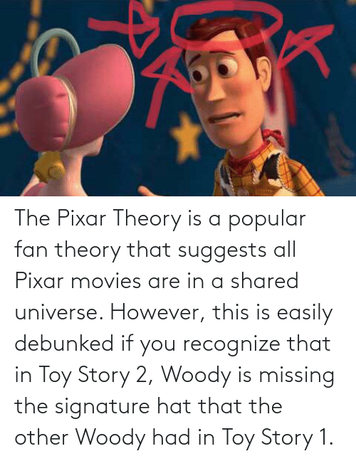 Pixar: The Pixar Theory is a popular fan theory that suggests all Pixar movies are in a shared universe. However, this is easily debunked if you recognize that in Toy Story 2, Woody is missing the signature hat that the other Woody had in Toy Story 1.