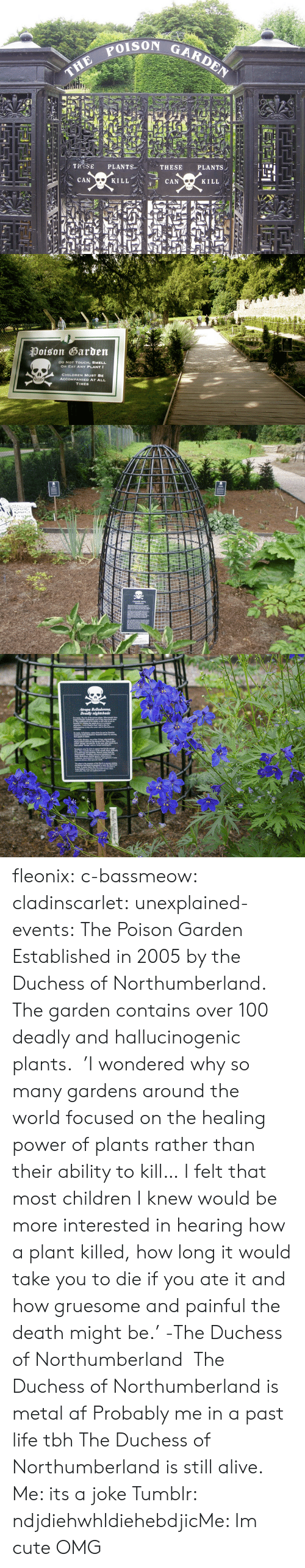 Metal Af: THE POIs  TROSE PLANTS  CAN  THESE PLANTS,  KILL  CAN  KILL   Poison Garden  DO NoT TOUCH, SMELL  OR EAT ANY PLANT  CHILDREN MUST BE  TIMES fleonix:  c-bassmeow:  cladinscarlet:  unexplained-events:  The Poison Garden Established in 2005 by the Duchess of Northumberland. The garden contains over 100 deadly and hallucinogenic plants.   'I wondered why so many gardens around the world focused on the healing power of plants rather than their ability to kill… I felt that most children I knew would be more interested in hearing how a plant killed, how long it would take you to die if you ate it and how gruesome and painful the death might be.'   -The Duchess of Northumberland  The Duchess of Northumberland is metal af   Probably me in a past life tbh  The Duchess of Northumberland is still alive.  Me: its a joke Tumblr: ndjdiehwhIdiehebdjicMe: Im cute OMG