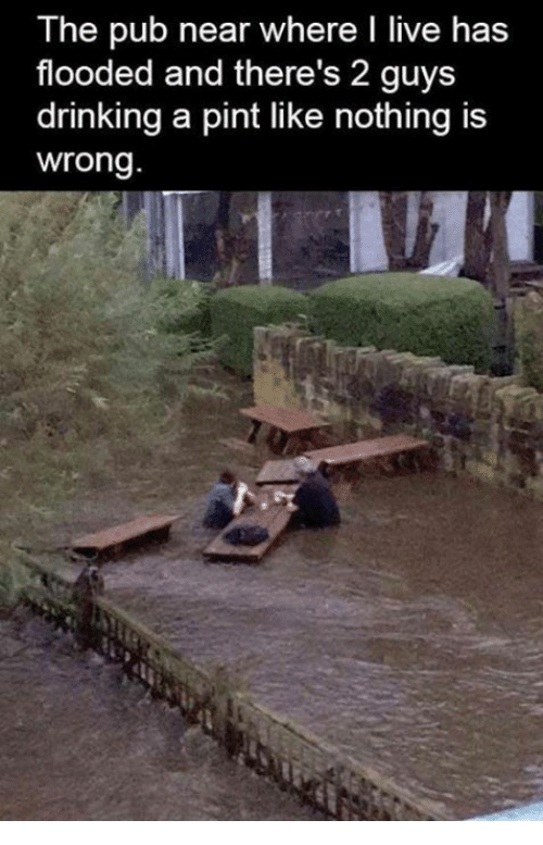Nothing Is Wrong: The pub near where I live has  flooded and there's 2 guys  drinking a pint like nothing is  wrong.