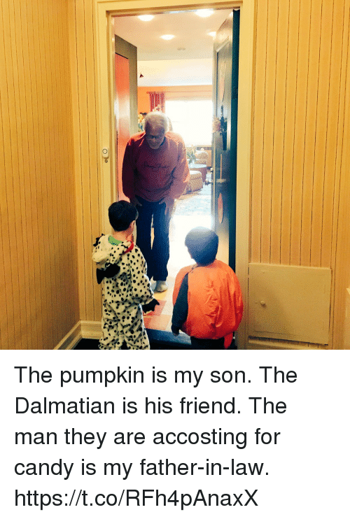 father in law: The pumpkin is my son. The Dalmatian is his friend.  The man they are accosting for candy is my father-in-law. https://t.co/RFh4pAnaxX