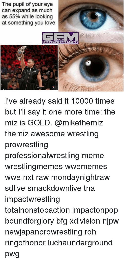 the miz: The pupil of your eye  can expand as much  as 55% while looking  at something you love  GE M  GRAVITY FOR GOT. ME I've already said it 10000 times but I'll say it one more time: the miz is GOLD. @mikethemiz themiz awesome wrestling prowrestling professionalwrestling meme wrestlingmemes wwememes wwe nxt raw mondaynightraw sdlive smackdownlive tna impactwrestling totalnonstopaction impactonpop boundforglory bfg xdivision njpw newjapanprowrestling roh ringofhonor luchaunderground pwg
