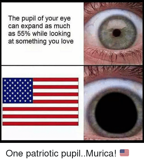 the pupil of your eye can expand as much as 27281894 🔥 25 best memes about memes memes, meme generator