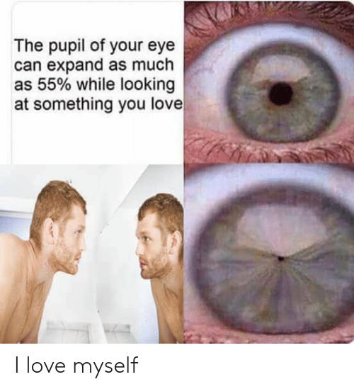 Pupil: The pupil of your eye  can expand as much  as 55% while looking  at something you love I love myself