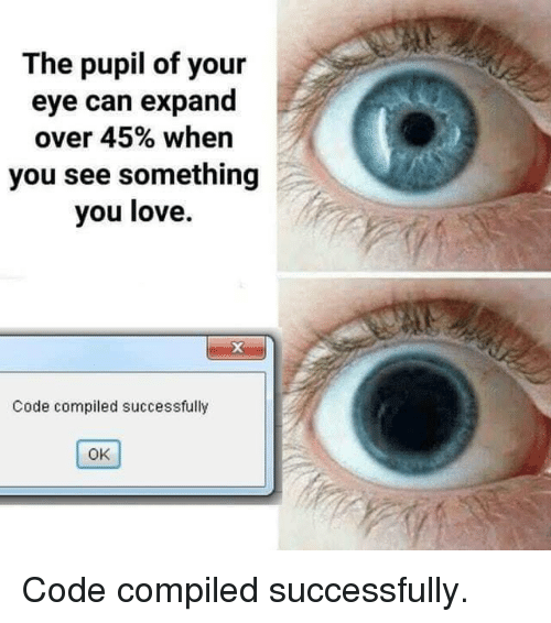 Pupil: The pupil of your  eye can expand  over 45% when  you see something  you love.  Code compiled successfully  OK Code compiled successfully.