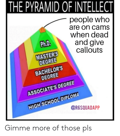 gimme more: THE PYRAMID OF INTELLECT  people who  are on cams  when dead  and give  callouts  Ph.D.  MASTER'S  DEGREE  BACHELOR'S  DEGREE  ASSOCIATE'S DEGREE  HIGH SCHOOL DIPLOMA  @R6SQUADAPP Gimme more of those pls