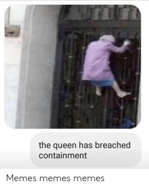 the queen: the queen has breached  containment Memes memes memes