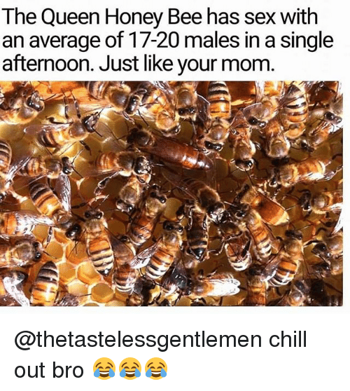 Chill, Memes, and Sex: The Queen Honey Bee has sex with  an average of 17-20 males in a single  afternoon. Just like your mom. @thetastelessgentlemen chill out bro 😂😂😂