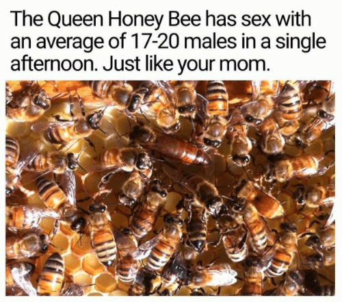the queen: The Queen Honey Bee has sex with  an average of 17-20 males in a single  afternoon. Just like your mom.