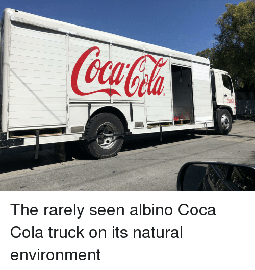 coca cola and irs